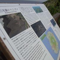 海ガメ展望台_看板