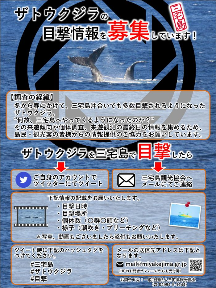 whale_eyewitness_poster2