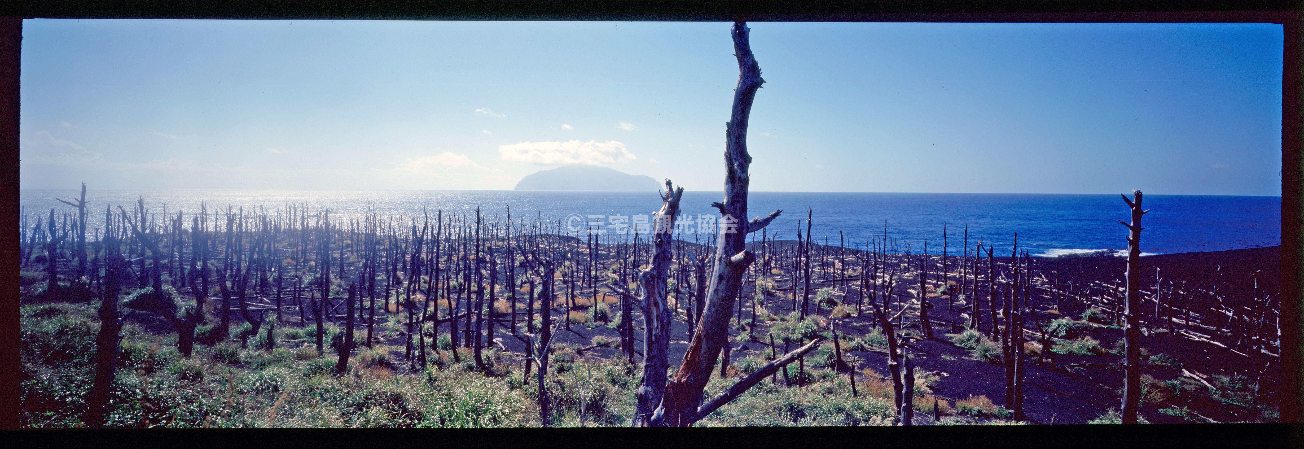 【パノラマ】 新鼻新山から御蔵島を臨む
