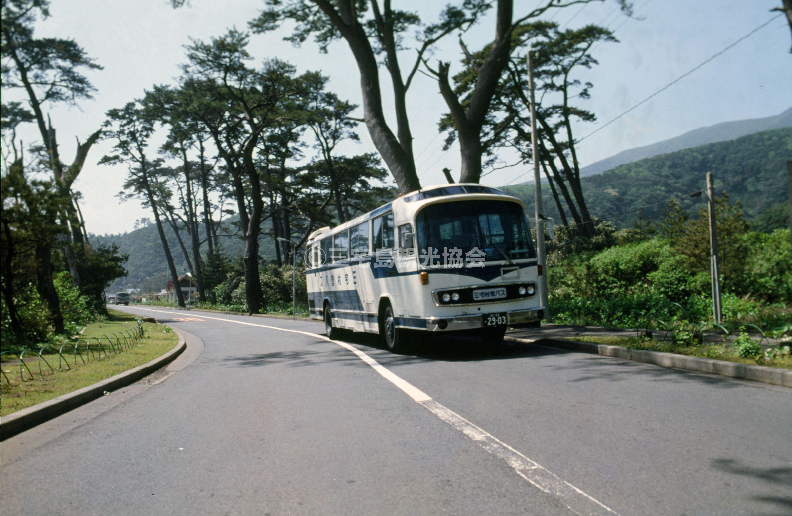三池浜前を走るバス