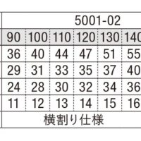 Tシャツ 5001-02